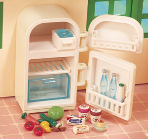 Fridge & Accessories