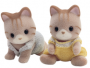 Macavity Cat Twin Babies